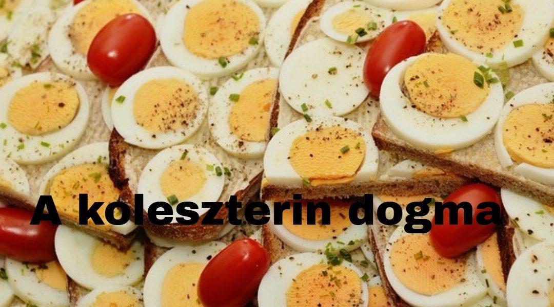 A koleszterin dogma