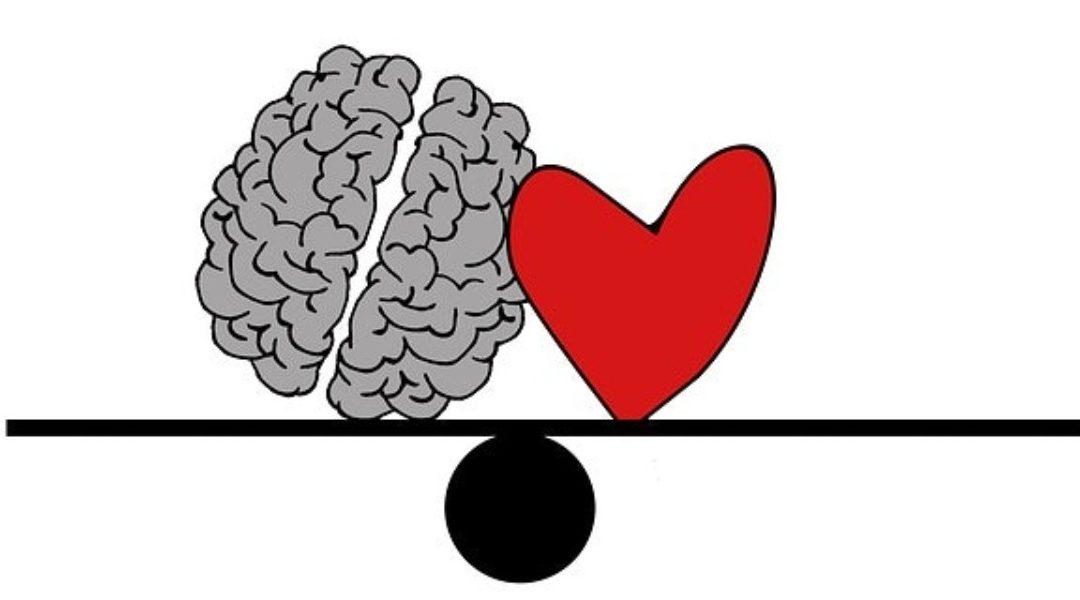 A szív és az agy kapcsolata